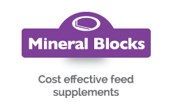Mineral Blocks - Cost effective feed supplements